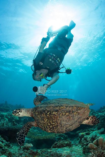 PaparazSea, Scuba Diving, Philippines