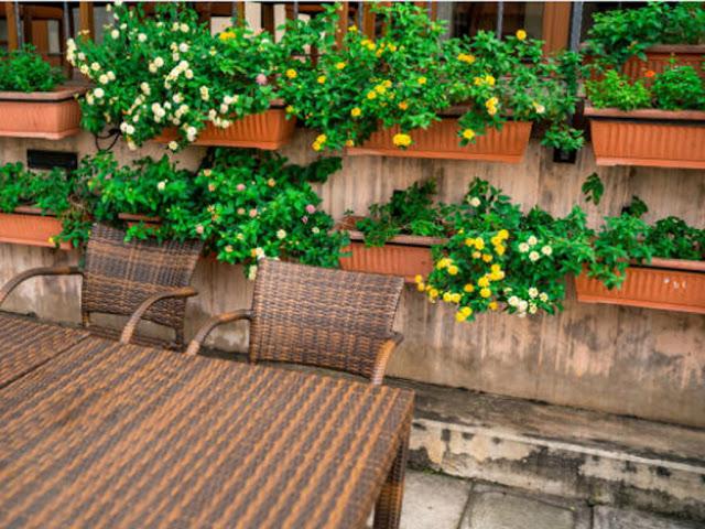 gambar menata taman depan rumah minimalis dengan lahan sempit