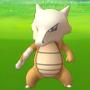 Pokemon GO: Marowak