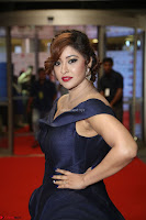 Payal Ghosh aka Harika in Dark Blue Deep Neck Sleeveless Gown at 64th Jio Filmfare Awards South 2017 ~  Exclusive 155.JPG