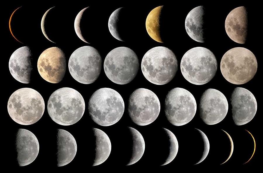 El Selvático: Calendario Lunar Venezuela. Fases de la luna 2018