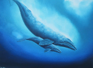 blue whale facts in hindi,blue whale ke baare me rochak tathya