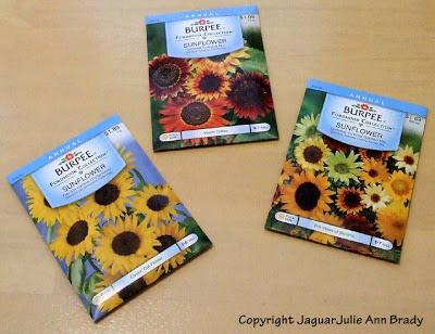 3 packets of Burpee Sunflower Seeds