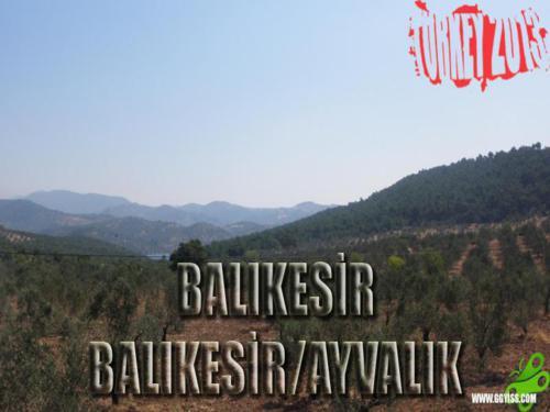 2013/06/26 Türkiye Turu 3. Gün (Balıkesir-Ayvalık)
