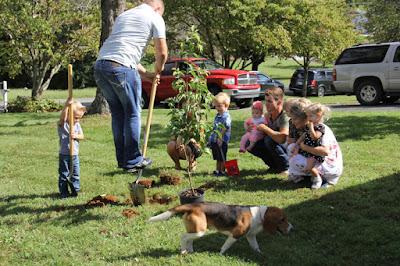 Bringing Up Bates planting a tree