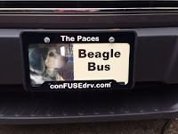New Beagle Fuse License Tag