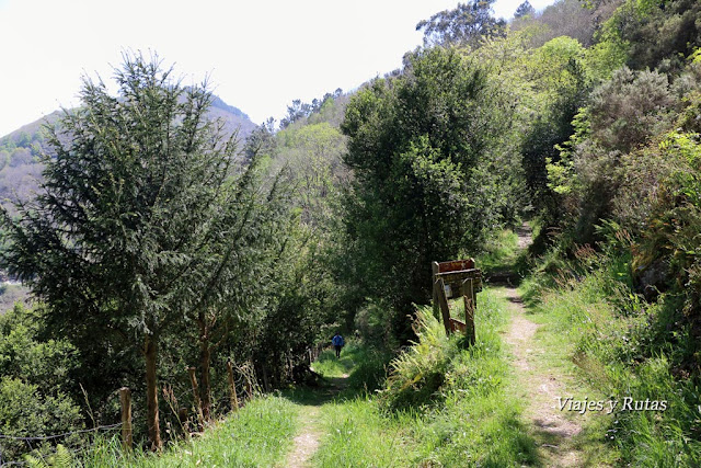 Desvío para Os Teixois, Ruta del Agua, Taramundi