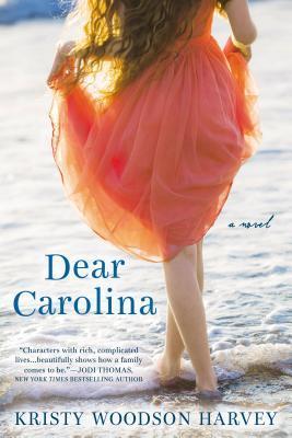books, reading, review, goodreads, Carolina, fiction, new author