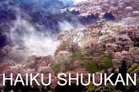 http://chevrefeuilleshaikushuukan.blogspot.in/