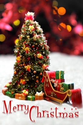 merry christmas android wallpaper 320x480