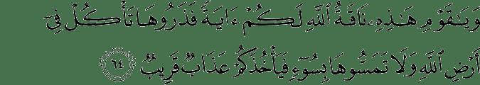 Surat Hud Ayat 64