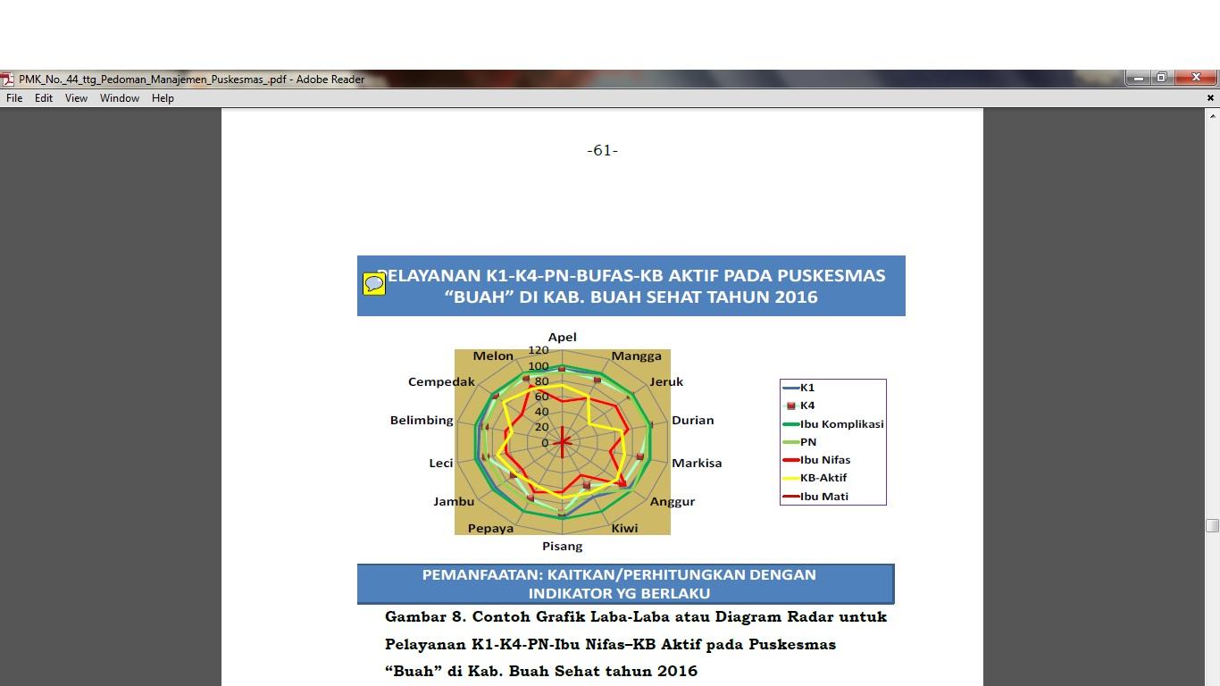 Manajemen puskesmas p3 penilaian kinerja 2018 berikut contoh penggunaan grafik sarang laba laba atau diagram radar untuk program kesehatan ibu anak dan keluarga berencana kia kb ccuart Gallery