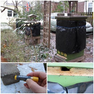 bee, beekeeping, climate, condensation, temperature, ventilation, winter,