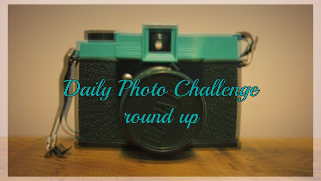 lomo - daily photo challenge round up header - C Gault 2018