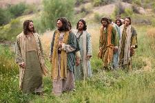 Cantos missa 8º Domingo Comum
