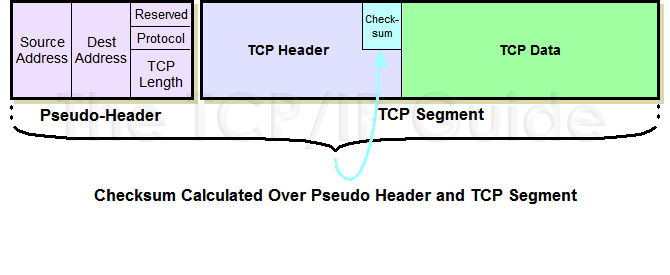 What is the use of Pseudo header in TCP/UDP packets?