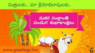 Makara Sankranti Festival 2018 Wishes in Telugu Language