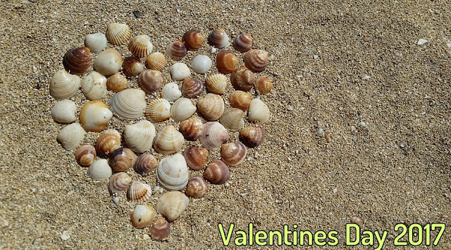 Valentines Day 2017 Wishes For Girlfriend, Boyfriend