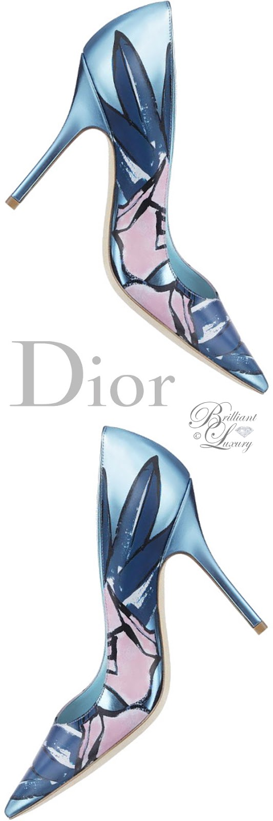 Brilliant Luxury ♦ Dior pump