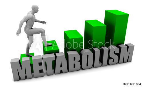 8 Ways to Speed up Your Metabolism - Burning calories with Metabolism !