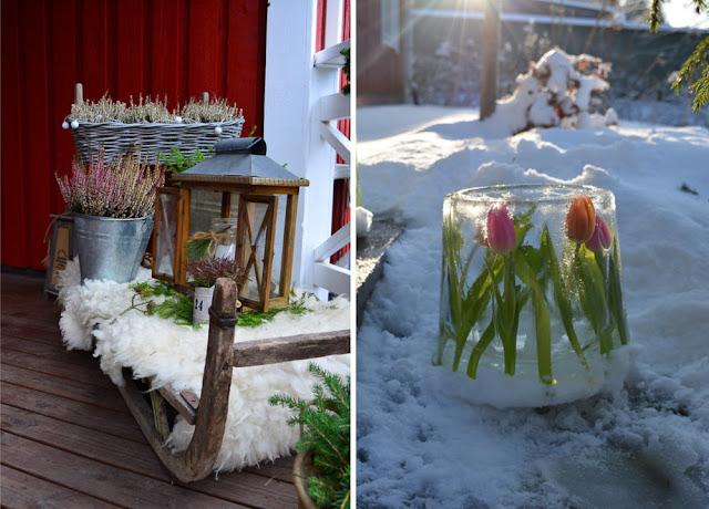 terassi talvi tulppaanijäälyhty