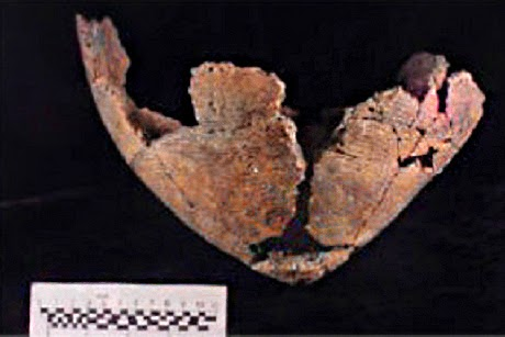 Early Humans: Fishy cooking habits of North American hunter-gatherers revealed