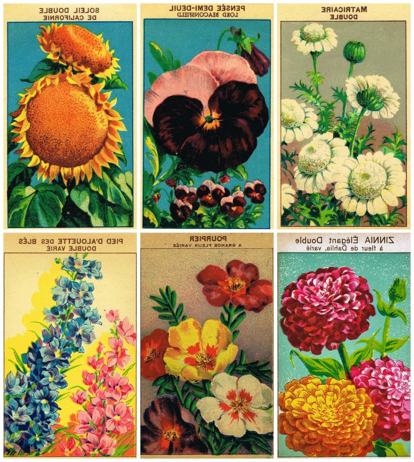 Printable Vintage Seed Packet Banner