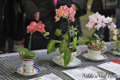 Philadelphia Flower Show; Orchids; Orchids in tea cups