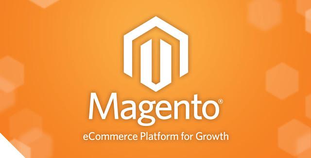 Magento : Membangun E-Commerce dengan Magento