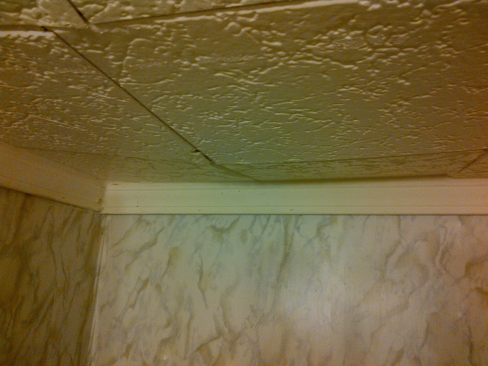 Mobile home textured ceiling panels motavera mobile home ceiling tiles and asbestos in dailygadgetfo Choice Image