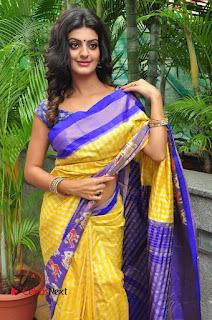 Model Tanishq Tiwari Pictures in Saree at Silk India Expo Curtain Raiser  0031.JPG