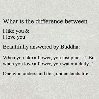 The difference between 'I like' you and 'I love you'