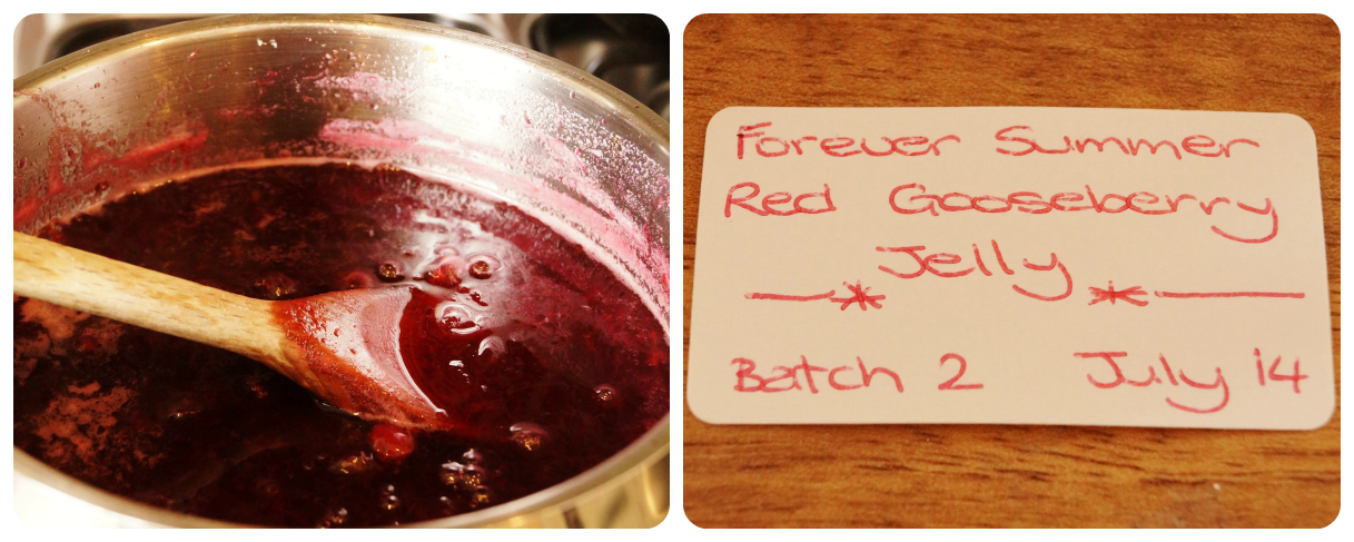 making red gooseberry jam  - 'growourown.blogspot.com' ~ an allotment blog