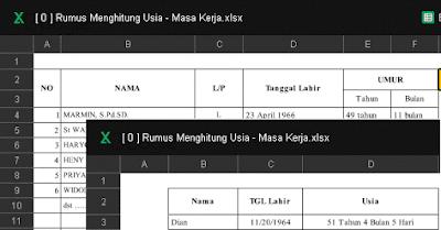 Aplikasi Menghitung Usia dan Masa Kerja Format Excel Otomatis