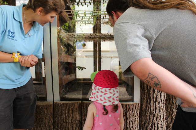 A review of Twycross Zoo