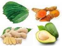 Sebelum kita mengulas perihal berbagai macam jenis  Aneka jenis tumbuhan obat penurun kolesterol