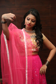 Geethanjali sizzles in Pink at Mixture Potlam Movie Audio Launch 021.JPG
