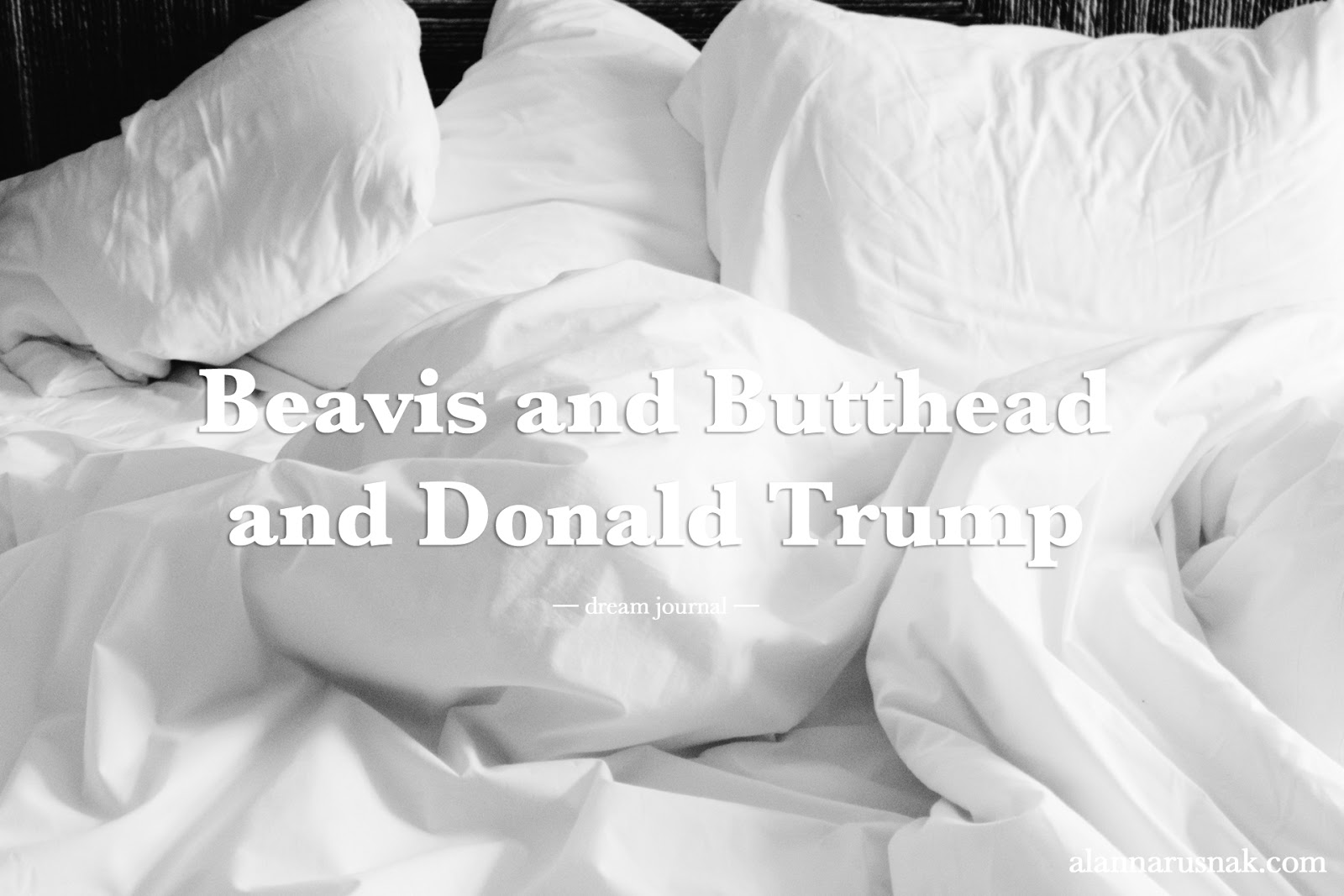 beavis and butthead and donald trump