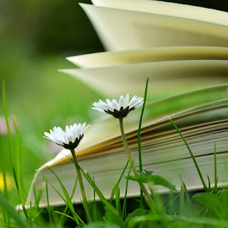 Growing flowers and book