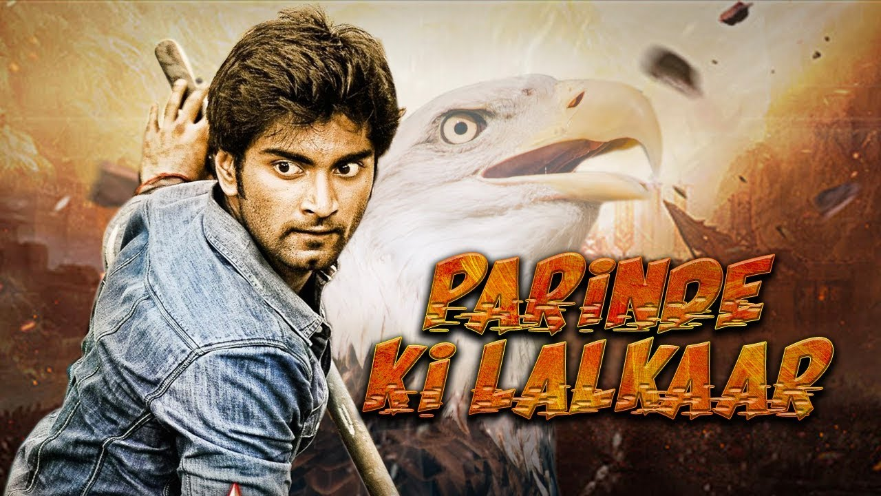 Parinde Ki Lalkaar 2019 Hindi Dubbed 720p HDRip 600MB