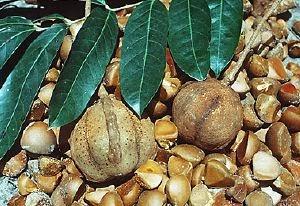 el bicarbonato sirve para bajar el acido urico algun remedio para la gota o acido urico como aliviar la gota en el pie