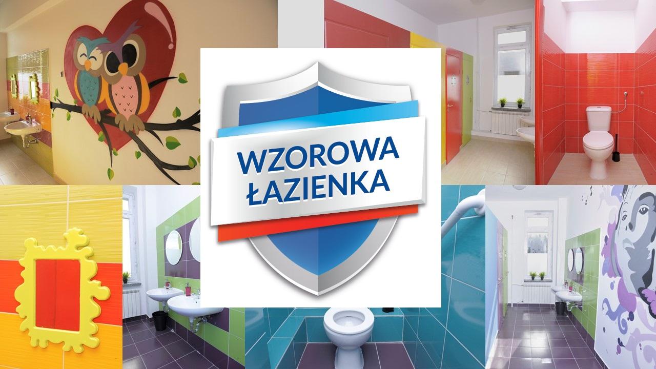 Wzorowa Łazienka - akcja marki Domestos - poprawa stanu higieny i czystości w polskich szkołach