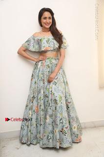 Actress Pragya Jaiswal Stills in Floral Dress at turodu Interview  0193.JPG