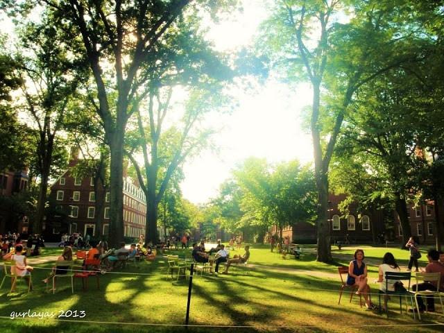 Harvard U grounds by gurlayas.blogspot.com