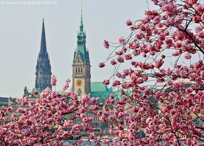 Frühlingsblick auf das Hamburger Rathaus mit St. Nikolai