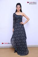 Telugu Actress Richa Panai Stills in One Shoulder Floral Long Dress at Rakshaka Bhatudu Movie Interview  0076.JPG