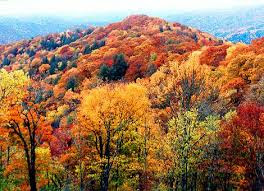 Colorful Smoky Mountains in the Fall