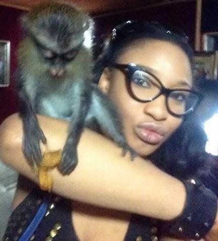 tonto dikeh monkey pet