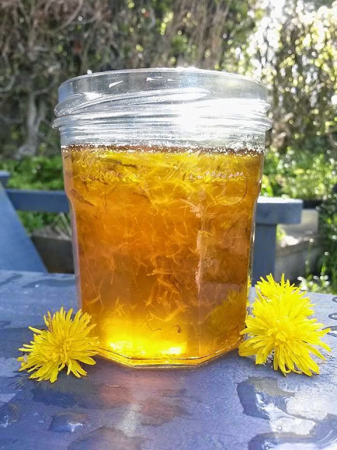 Foraged Wild Food - Dandelion Jam / Honey