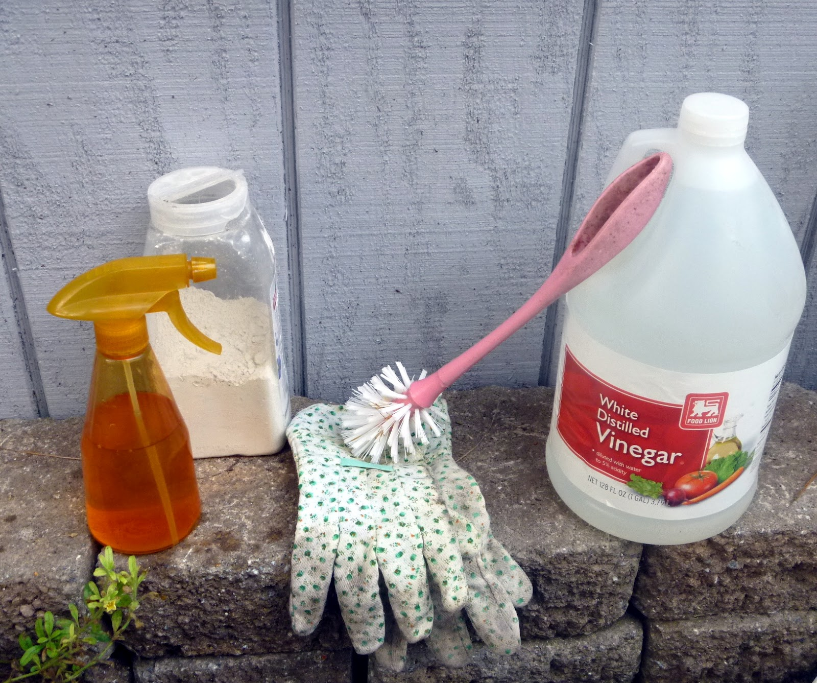 Cleaning your Coop the Natural Way | Community Chickens